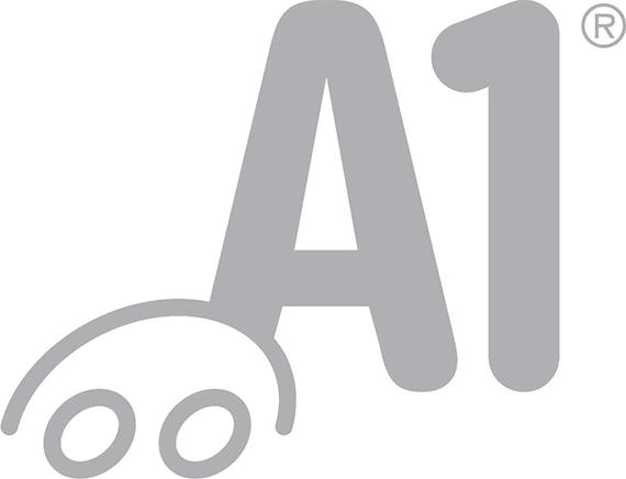A1 Rahoitus